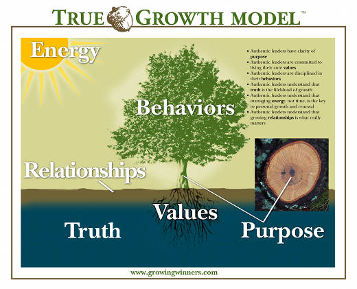 True Growth Model